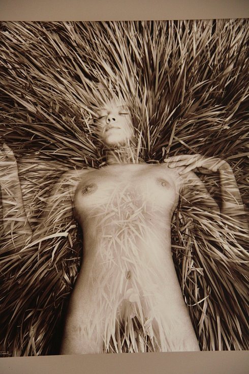 Ve Vlastivědném muzeu stále probíhá výstava děl olomouckého malíře a fotografa Pavla Rozsívala.