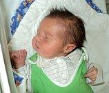 Max Michlo, Lužice, narozen 19. září ve Šternberku, míra 51 cm, váha 3760 g