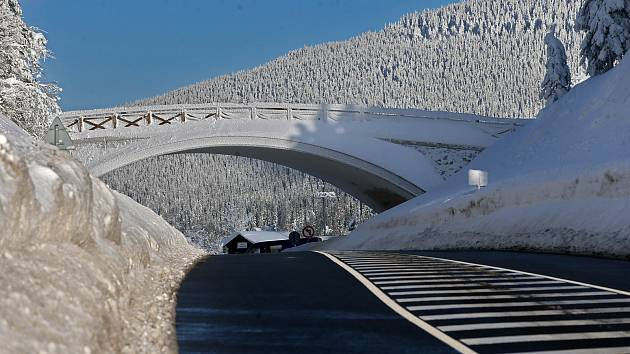 VIDEO  Přes Sedlo jako v Mrazíkovi - takto se teď jede pohádkovou zimou 5f23d8e730