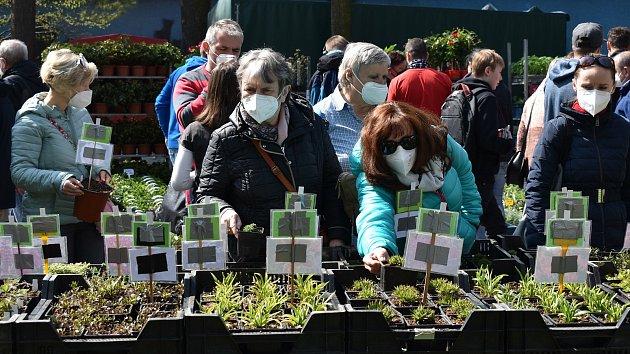 První Zahradnické trhy roku 2021na výstavišti Flora Olomouc. 24.dubna 2021