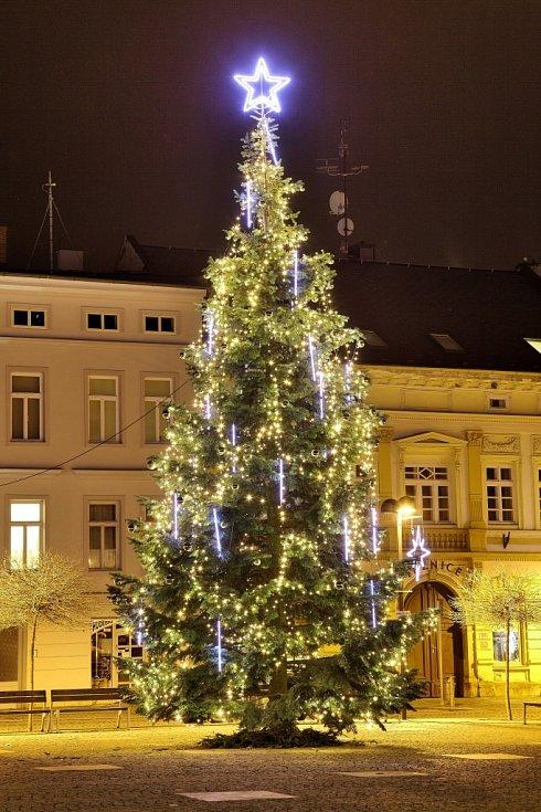 3. Šternberk, Hlavní náměstí, jedle, 10 metrů