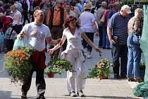 Jarní etapa výstavy Flora Olomouc 2015