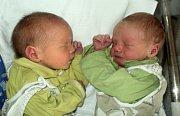 Viktor a Lukáš Melichárkovi, Bruntál, narozeni 16. září ve Šternberku, míry 49 a 48 cm, váha 2550 a 2570 g