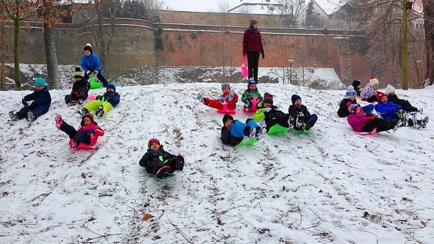 Předškoláci z olomoucké mateřské školy Michalské stromořadí si užívají sněhu na kopci v Bezručových sadech, kam vyrazili místo obvyklé procházky.