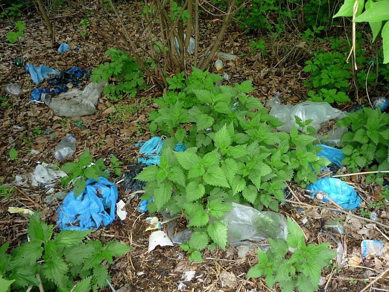 Odpadky podél stezky od Androva stadionu k Mlýnskému potoku