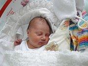 Viola Frömelová, Luká,narozena 16. prosince,míra 50 cm, váha 3330 g