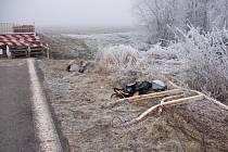 Kus zničeného zábradlí u cyklostezky Uničov - Želechovice krátce po novoroční havárii BMW