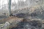 Hasiči během pondělí 6. dubna likvidovali požáry na devíti místech Olomouckého kraje. Požár u Zlatých Hor.