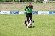 To nejlepší z Dogfrisbee jde o víkendu k vidění v Olomouci