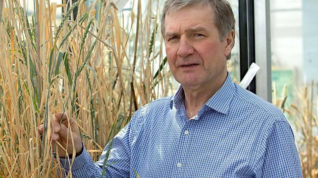 Profesor Jaroslav Doležel, vedoucí olomouckého pracoviště Ústavu experimentální botaniky Akademie věd ČR