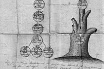 Fragment rodokmenu Haanů zLöwenbergu, malba tuší a inkoustem na papíru, datováno 1816 (RA Haanů zLöwenbergu – soukromá sbírka)