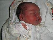 Michaela Mráčková, Olomouc, narozena 11. února v Olomouci, míra 52 cm, váha 3930 g