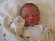 Natálie Přikrylová, Olomouc, narozena 10. února v Olomouci, míra 51 cm, váha 3100 g