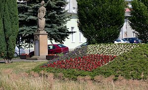 Květiny v barvě republiky