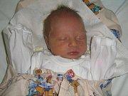 Tereza Zavadilová, Grygov, narozena 6. února v Olomouci, míra 50 cm, váha 3030 g