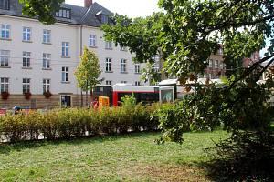 Mrtvola muže ležela v křoví vedle frekventované třídy Svobody v centru Olomouce