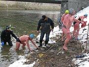 Otužilci v řece Moravě v Olomouci