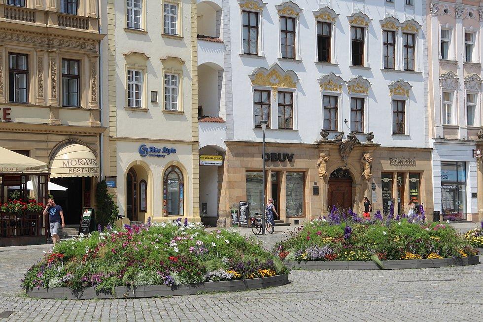 Letničky před Sloupem Nejsvětější Trojice v Olomouci