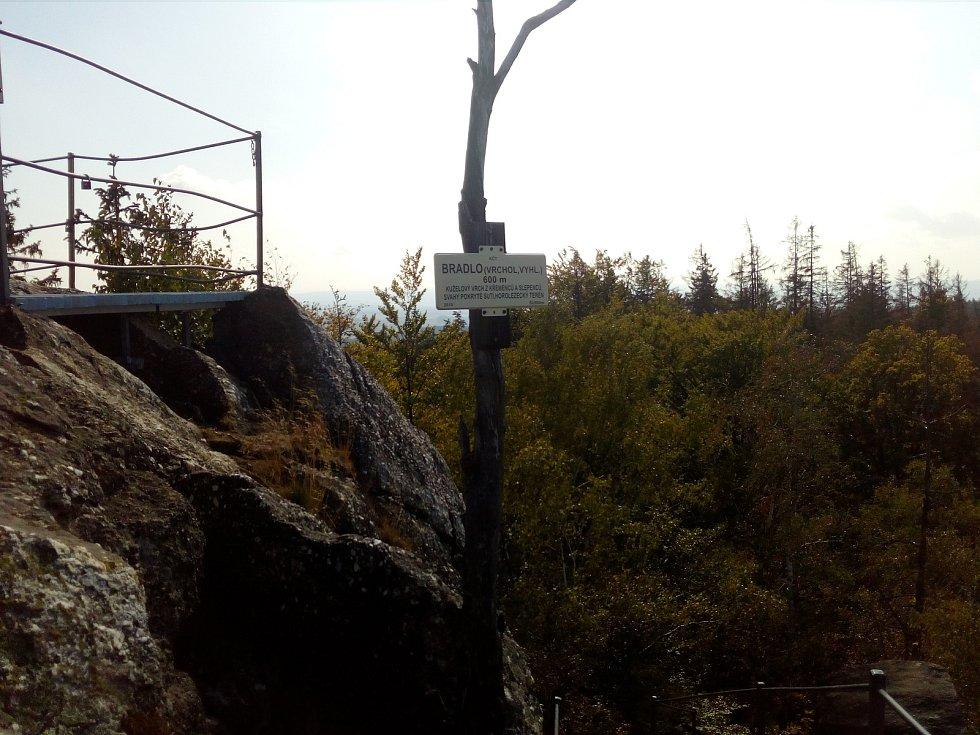 Bradlo, nejvyšší bod Úsovské vrchoviny, sžírá kůrovec. Turisty vyhledávaný kopec je na přístupových cestách k nepoznání