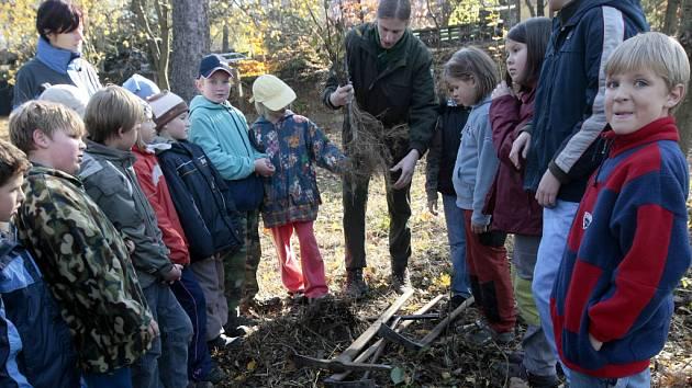 Děti sázely stromky.