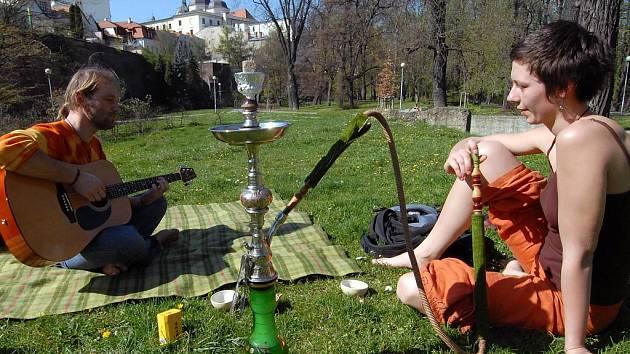 Piknik v parku.