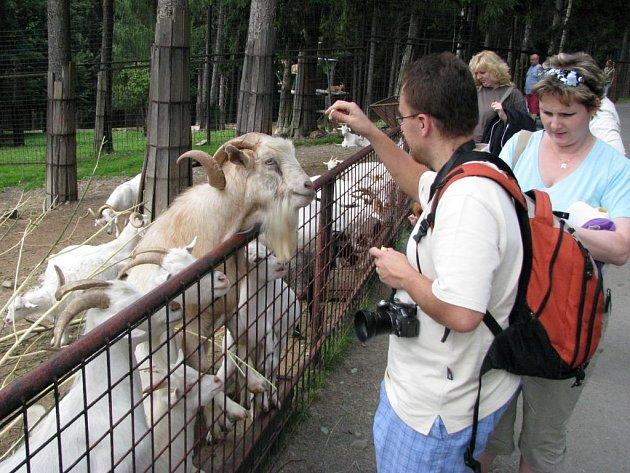Přístupný výběh pro kozy v olomoucké zoo