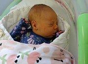 Julie Zemanová, Prostějov narozena 27. ledna míra 51 cm, váha 3500 g