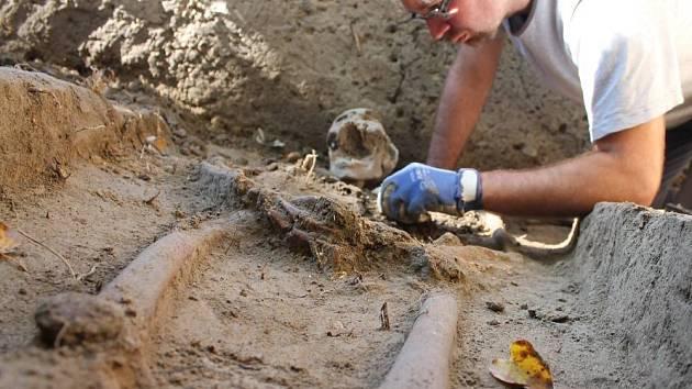Po zhruba dvě stě padesáti letech spatřily světlo světa ostatky pravděpodobně vojáků z období Napoleonských válek. Kostry našli archeologové u Božích muk na konci Majetína na Olomoucku.