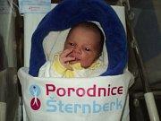 Tom Laštůvka, Mrsklesy, narozen 22. ledna, míra 53 cm, váha 3950 g