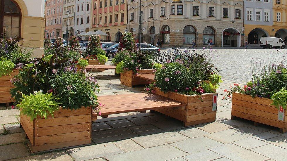 Zelené zákoutí k posezení na rohu olomoucké radnice