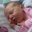 Sylvie Liselotte Hanáková, Olomouc, narozena 11. dubna, míra 51 cm, váha 3490 g