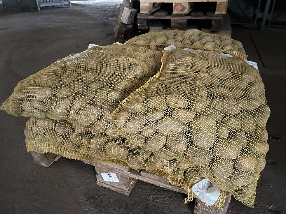Zemědělské družstvo Vrbátky, farma Dubany, brambory na prodej za 10 Kč/1kg, 21. dubna 2021