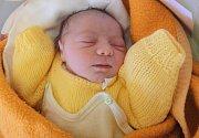 Sára Kačová, Olomouc, narozena 1. dubna v Olomouci, míra 48 cm, váha 2860 g