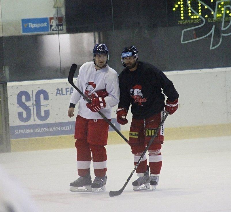 Rostislav Olesz a Zbyněk Irgl