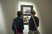 V třebovském Kulturním centru je od pátku až do 27. ledna k vidění výstava abstraktních fotografií Lukáše Rufera.