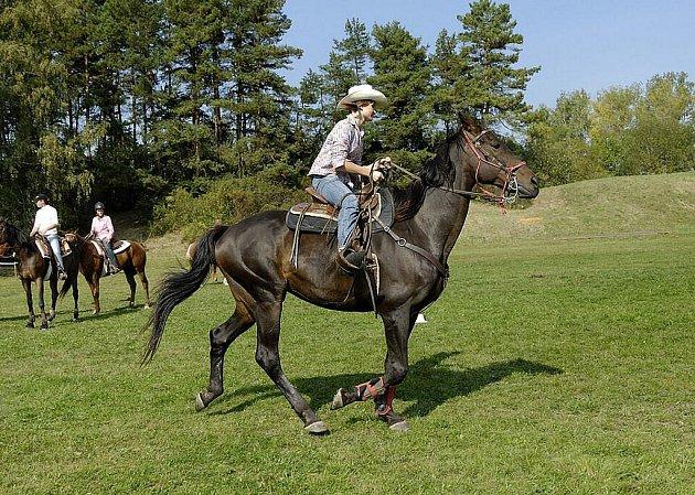 V Třebovici se po dvanácté jela tradiční Hubertova jízda.