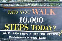 Ušel jsi dnes 10 tisíc kroků?