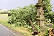 Strom na Lanškrounsku spadl těsně vedle mariánského sloupu.