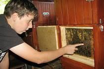 Mladý včelař Jirka Prachař.