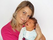 Dominik Urbánek je po Lukášovi druhorozený syn Moniky Horké a Romana Urbánka z Žichlínku. Narodil se s váhou 4100 g dne 4. 1. v 8.02 hodin.