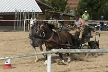 První vozatajské závody v hřebčíně Karlen v Dlouhé Třebové, které se konaly minulou sobotu, se povedly.