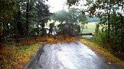Hasiči po silné bouřce odstraňovali popadané větve a stromy.