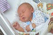 David Prokop se narodila Elišce a Davidovi z Koruny 2. 10. v 1.44 hodin, kdy vážil 4,250 kg. Sestřička se jmenuje Anetka.