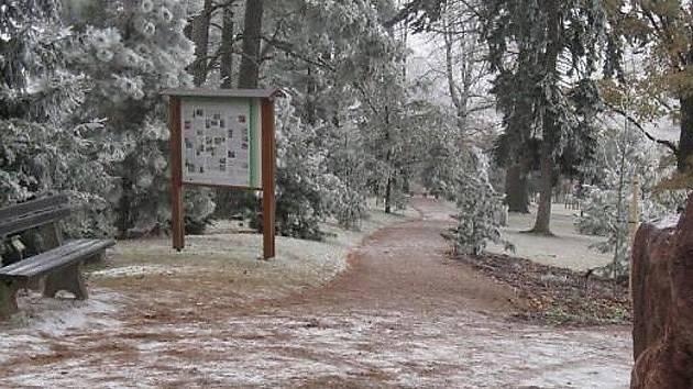 Arboretum na Žampachu.