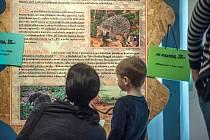 Únorová Sobota v muzeu v České Třebové se nesla v duchu probíhající výstavy Rekordy a kuriozity ze světa zvířat Savci.