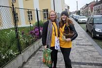 Český den proti rakovině v Chocni