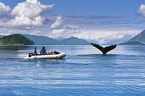 Aljaška – Pobřeží Pacifiku pohledem Leoše Šimánka.