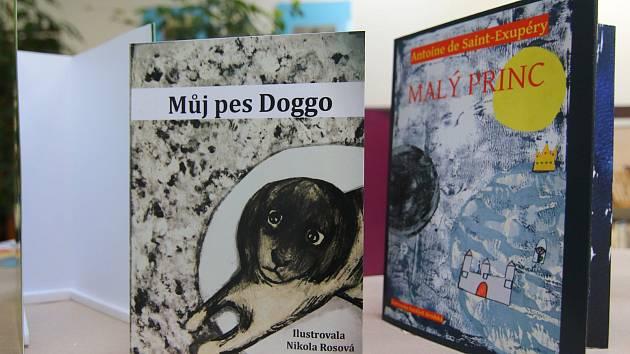 Výstava Jak obléknout knihu v knihovně v Ústí nad Orlicí.