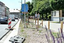 Květinový pás podél silnice I/14 mezi ulicemi Krátká a Litomyšlská na Tyršově náměstí v České Třebové.