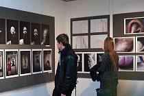Mezinárodní bienále fotografie uměleckých škol v polské Gdyni.